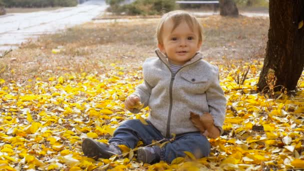Slow motion footage of cute smiling baby boy sitting fallen autumn leaves at park
