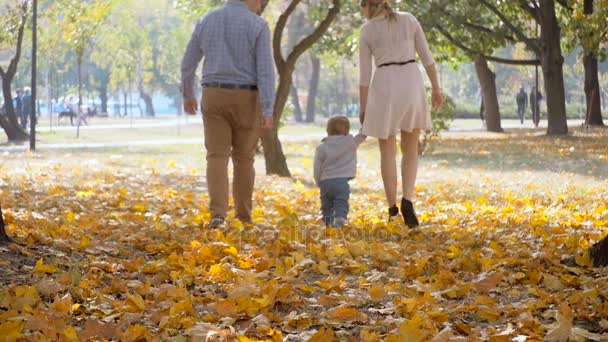 Out of focus shot of parents walking with baby son at autumn park