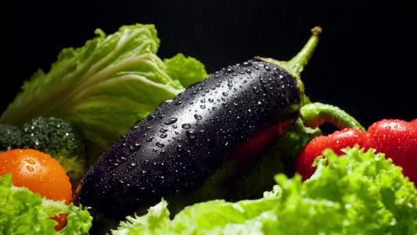 Closeup 4k video of sprinkling water on ripe eggplant lying on lettuce leaves. Water droplets falling on fresh vegetables