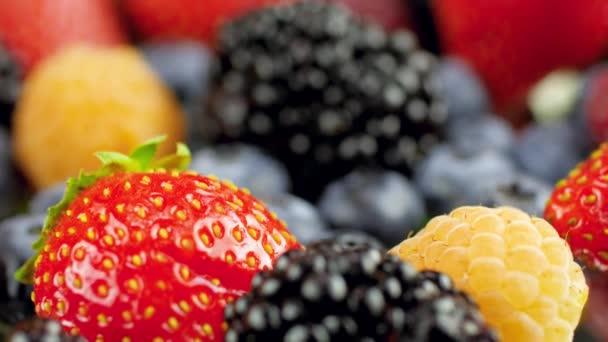 Szekrény makró dolly videó nagy választéka bogyók az asztalon. Tökéletes elvont háttér a kulináris vagy egészséges ételekhez.