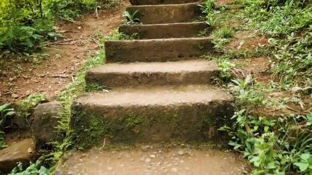 4k Pov video chůze na starých úzkých schodech na stezce v moutnains v tropické džungle lesa