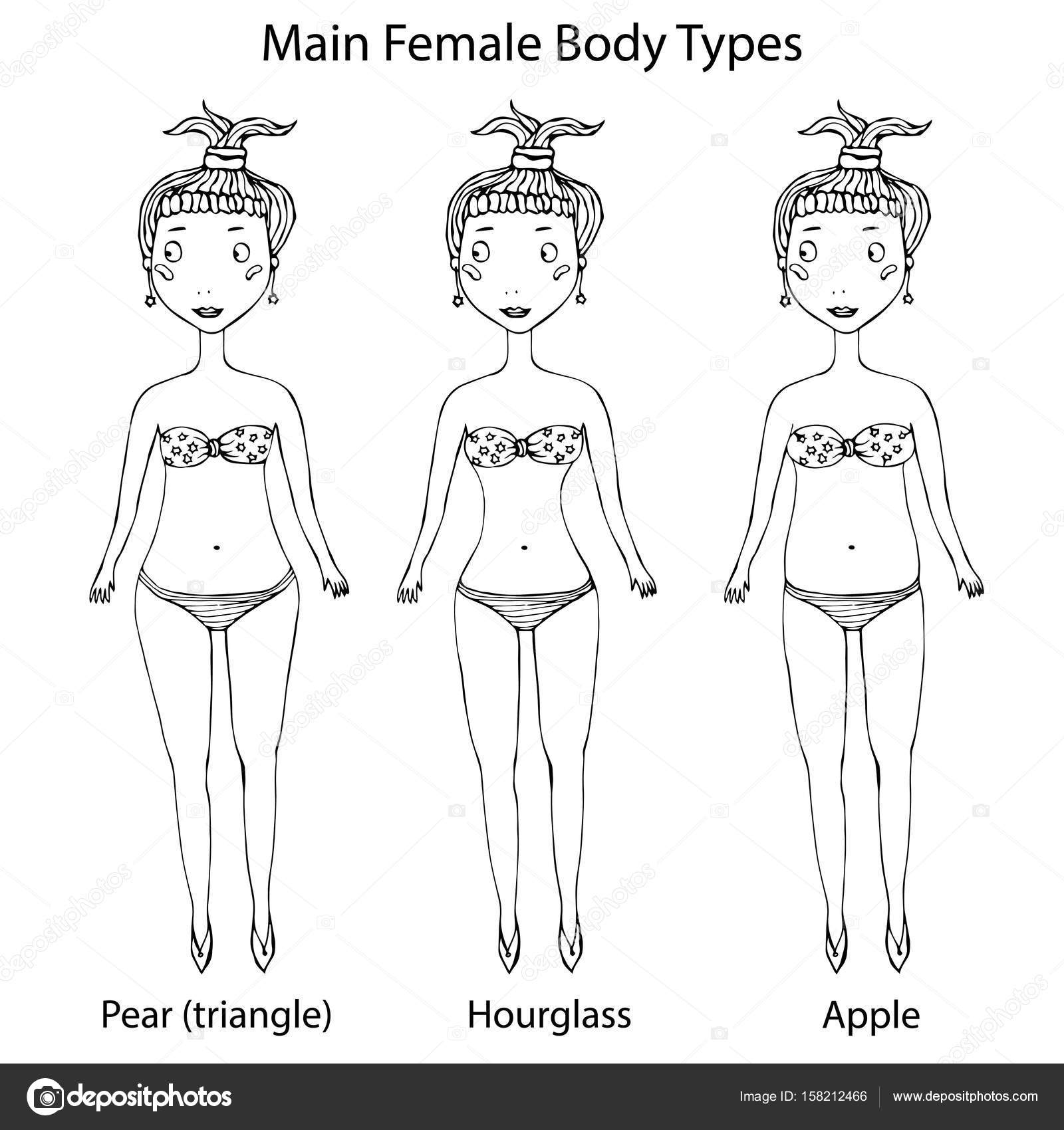 Main Female Body Shape Types  Hourglass, Pear or Triangle