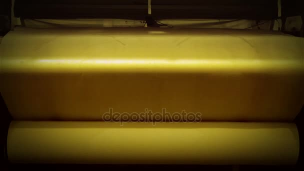 Role papíru, papírenský průmysl