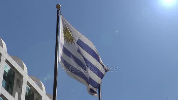 Bandiera Uruguay a Montevideo