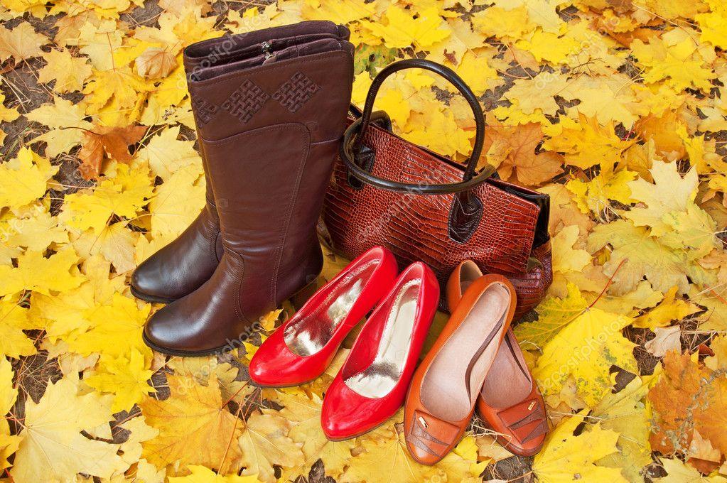 cf3650e319f Δερμάτινα παπούτσια και μπότες με φθινοπωρινά φύλλα. Παπούτσια και τσάντες  συλλογή πωλήσεων. Φθινόπωρο Πώληση– εικόνα αρχείου