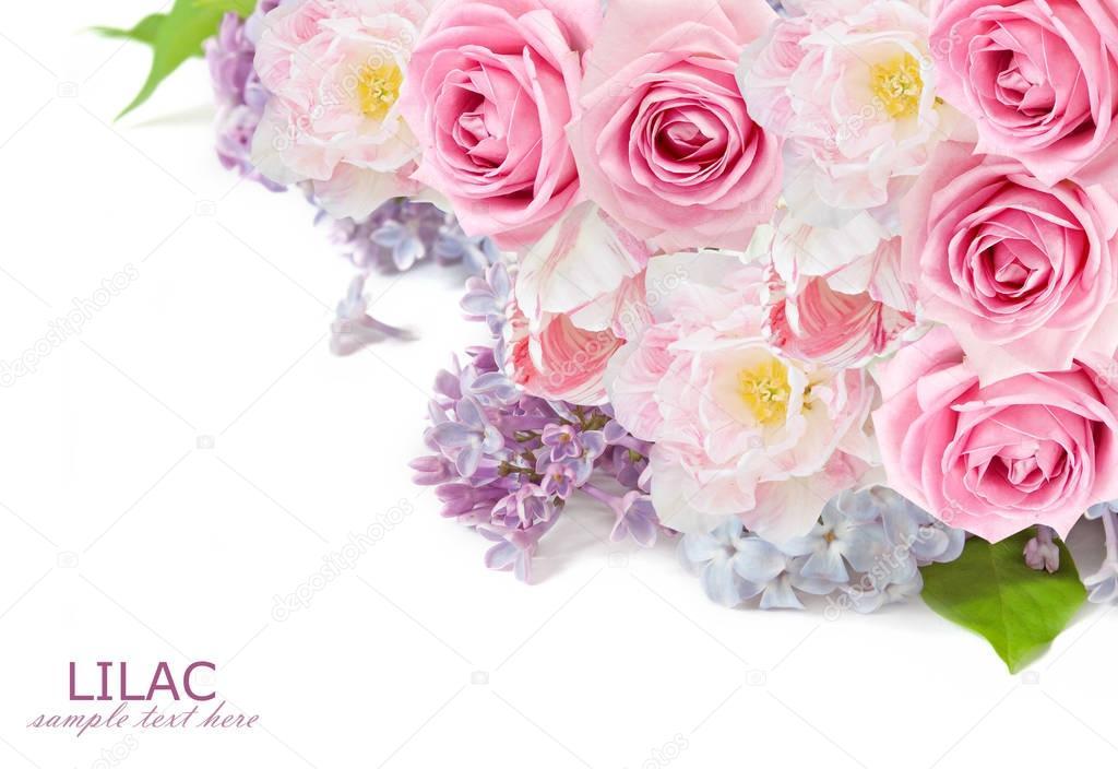 Flores Lilas Con Rosas Sobre Fondo: Rosas, Lila Flores Y Tulipanes Fondo Aislado Sobre Fondo