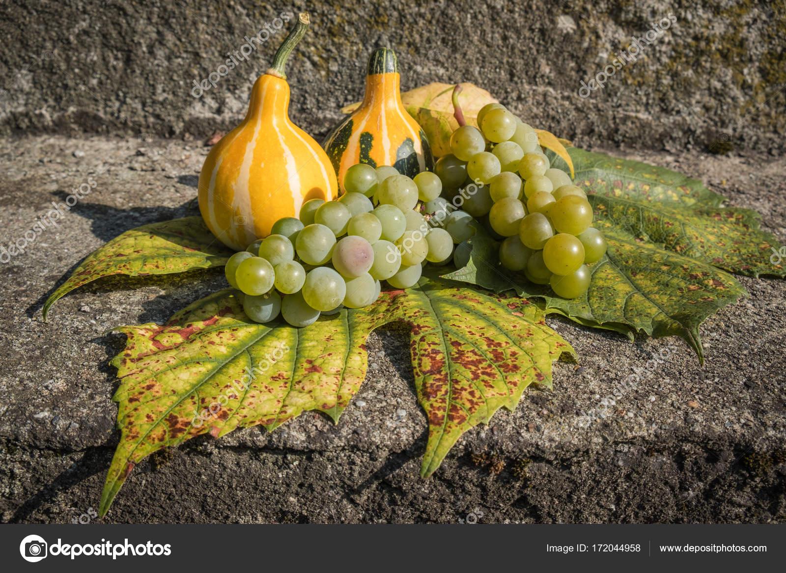 Decoración calabazas amarillas y hojas de vid — Foto de stock ...