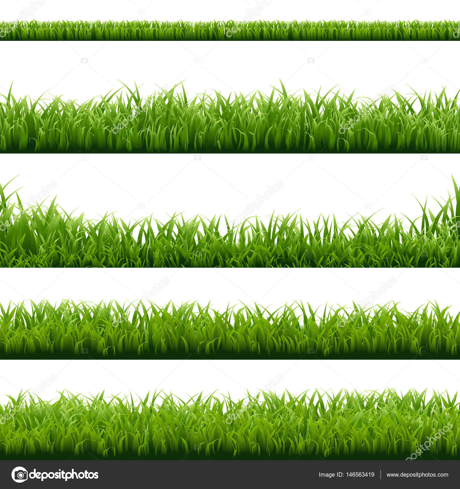 Set of green grass borders stock vector barbaliss for Best grasses for borders