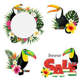 Toucans Tropical Set