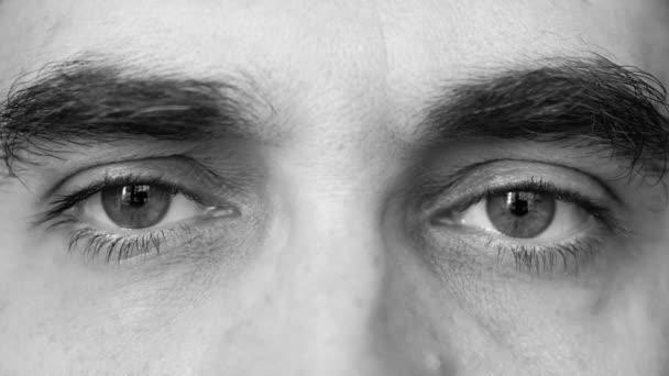 Velký bratr se dívá velkýma očima. Super makro, velmi zblízka.
