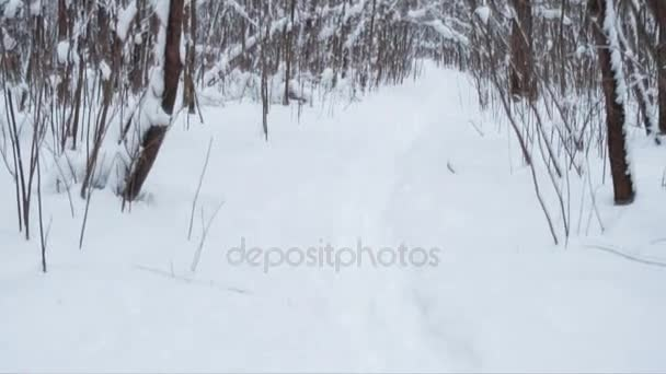 Winter landscape with footpath. Loop