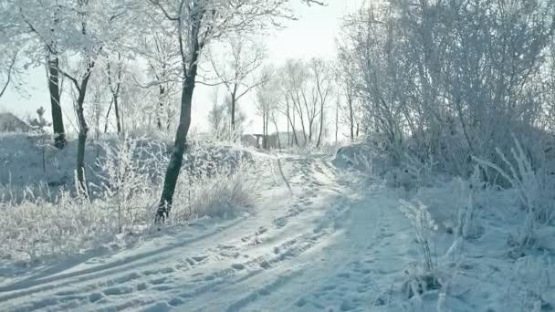 schöne frostige sonnige Winterlandschaft. konvertiert von roh. rec 709