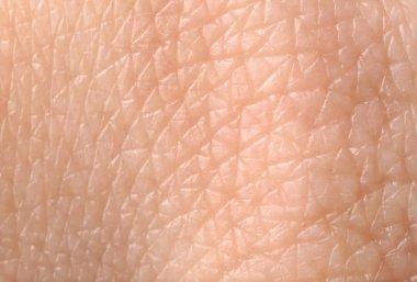 Texture of human skin, closeup