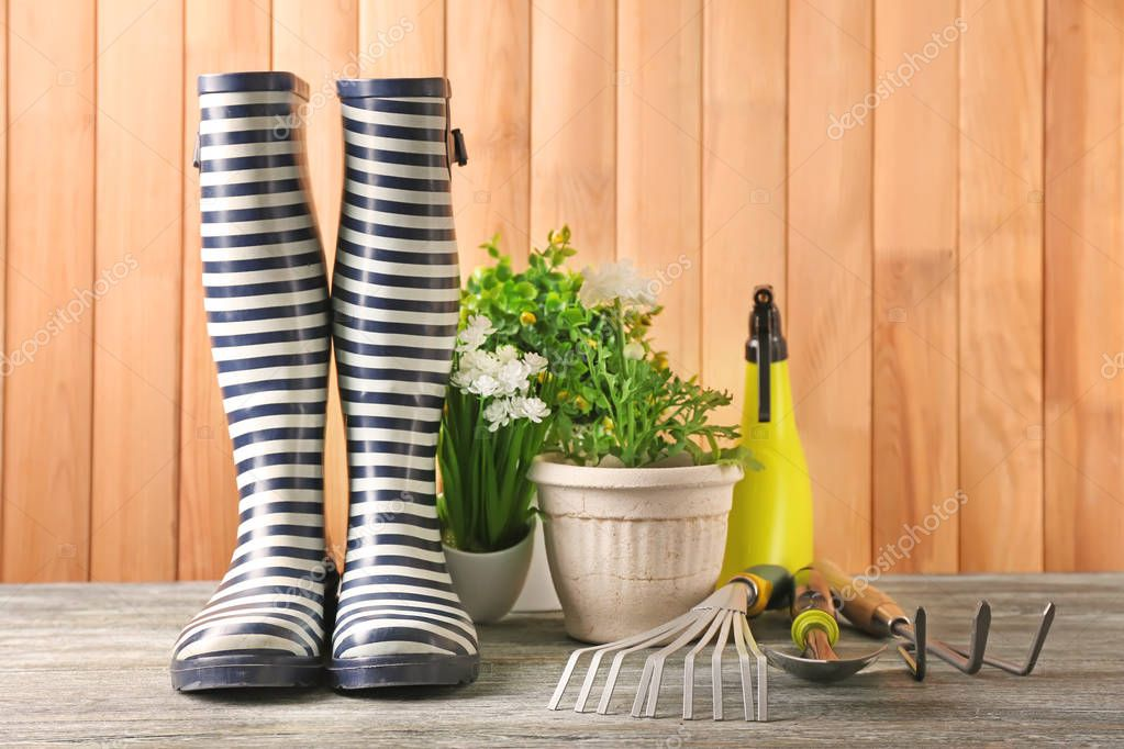 Rubber boots, pot plants and gardening tools on wooden background
