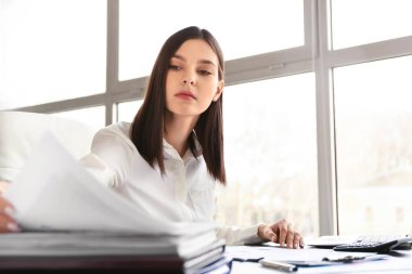 Young female accountant working in office