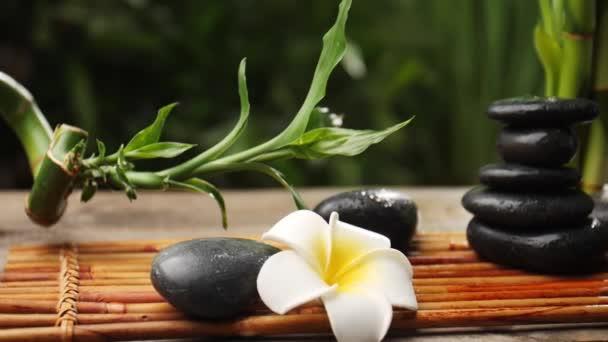 Zenové kameny, krásné květiny a bambus na stole