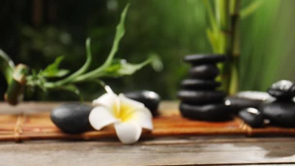 Soustředění fotoaparátu na krásnou kompozici s zenovými kameny