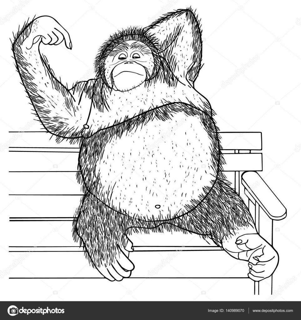 Orang-Utan handgezeichneten skizzierte Vektor-Illustration. Doodle ...