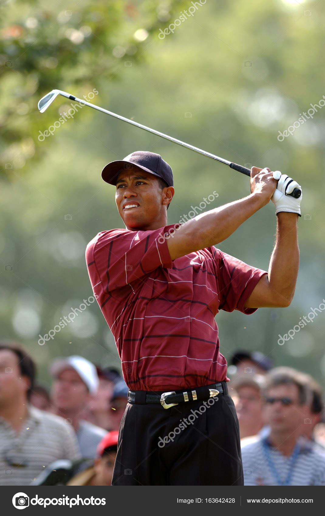 7a019a4df Tiger Woods US Oen 2002 – Stock Editorial Photo © ProShooter #163642428