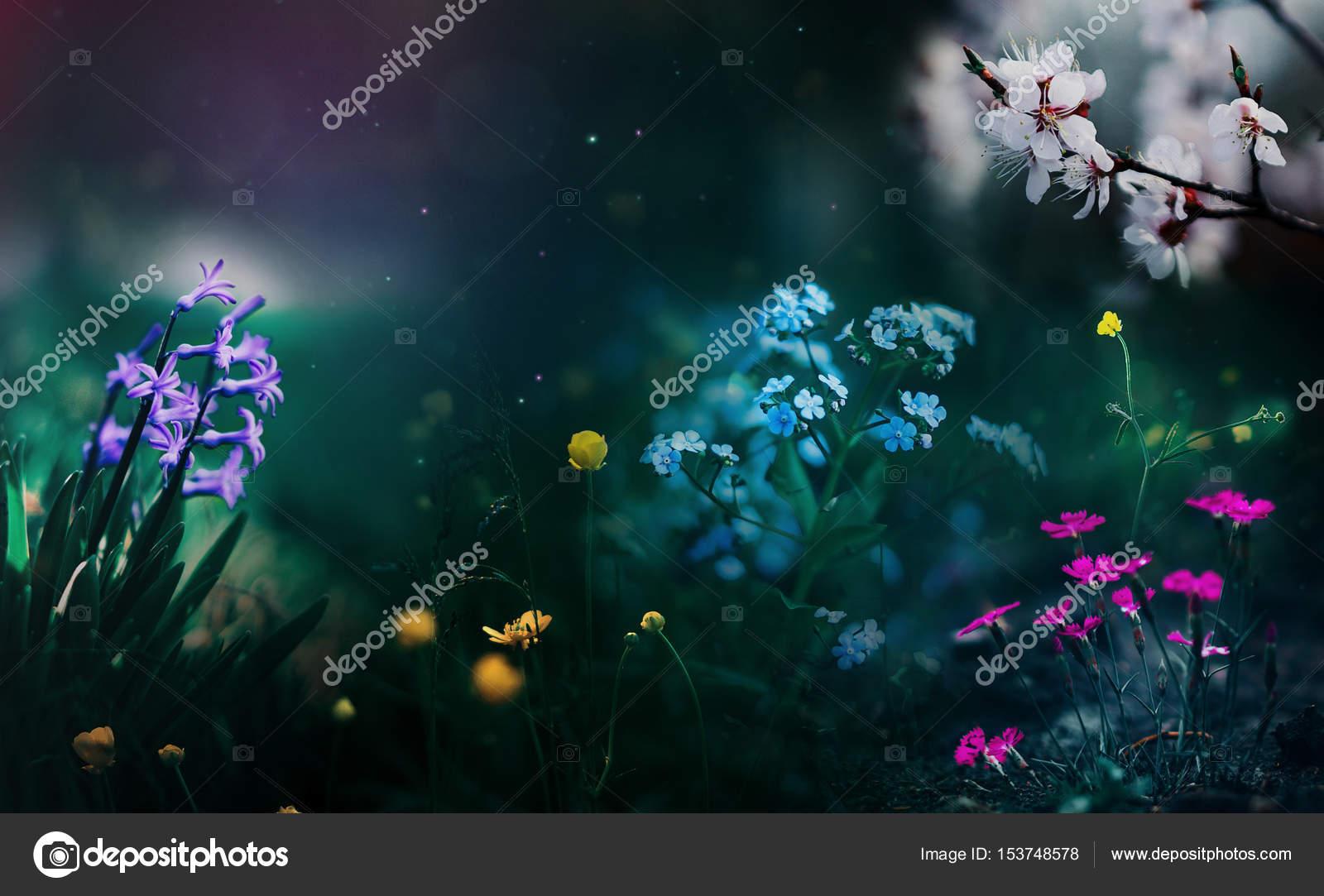 Какой цвет незабудки и лютики