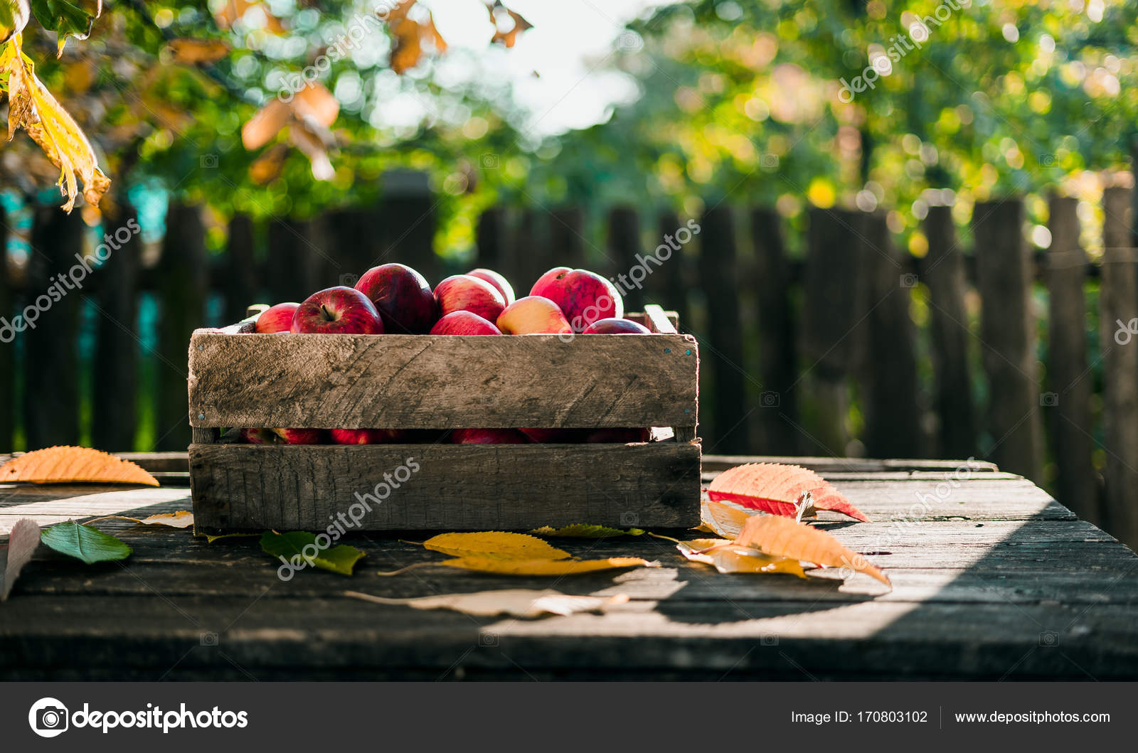 outdoor backgrounds. Autumn Apple On Old Wood Table In Outdoor Backgrounds. \u2014 Photo By Elijah_sad Backgrounds L