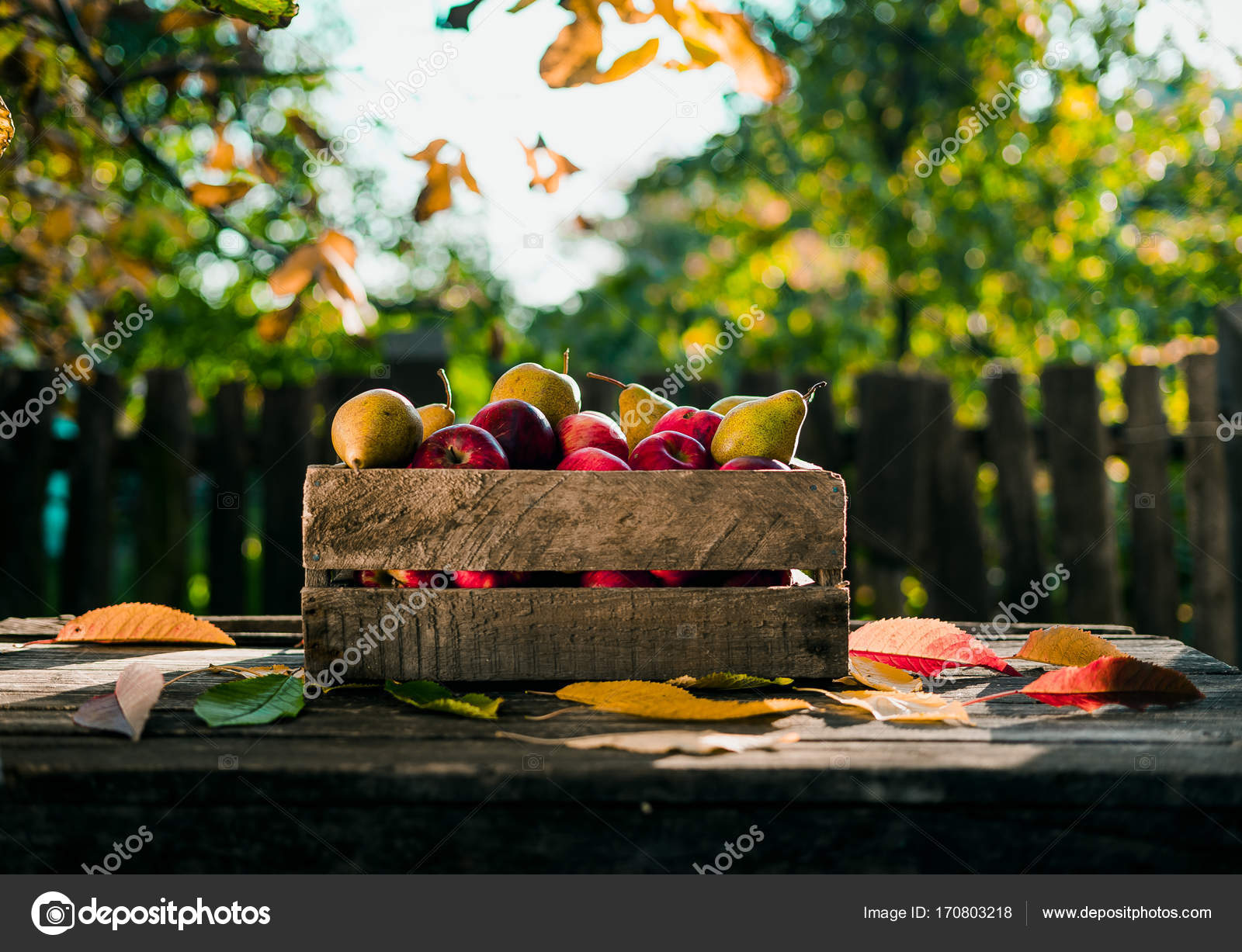 outdoor woods backgrounds. Fine Backgrounds Autumn Pears On Old Wood Table In Outdoor Backgrounds U2014 Photo By Elijah_sad Throughout Outdoor Woods Backgrounds