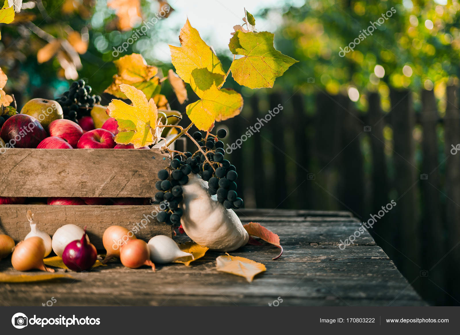outdoor backgrounds. Autumn Fruits On Old Wood Table In Outdoor Backgrounds. \u2014 Photo By Elijah_sad Backgrounds K