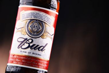 Bottle of Budweiser beer
