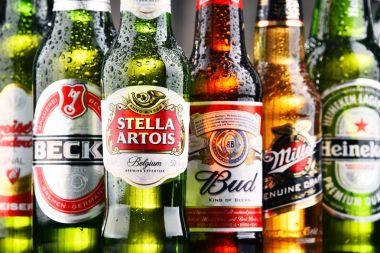 Bottles of assorted global beer brands