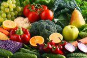 Složení s řadou raw bio zeleniny a ovoce