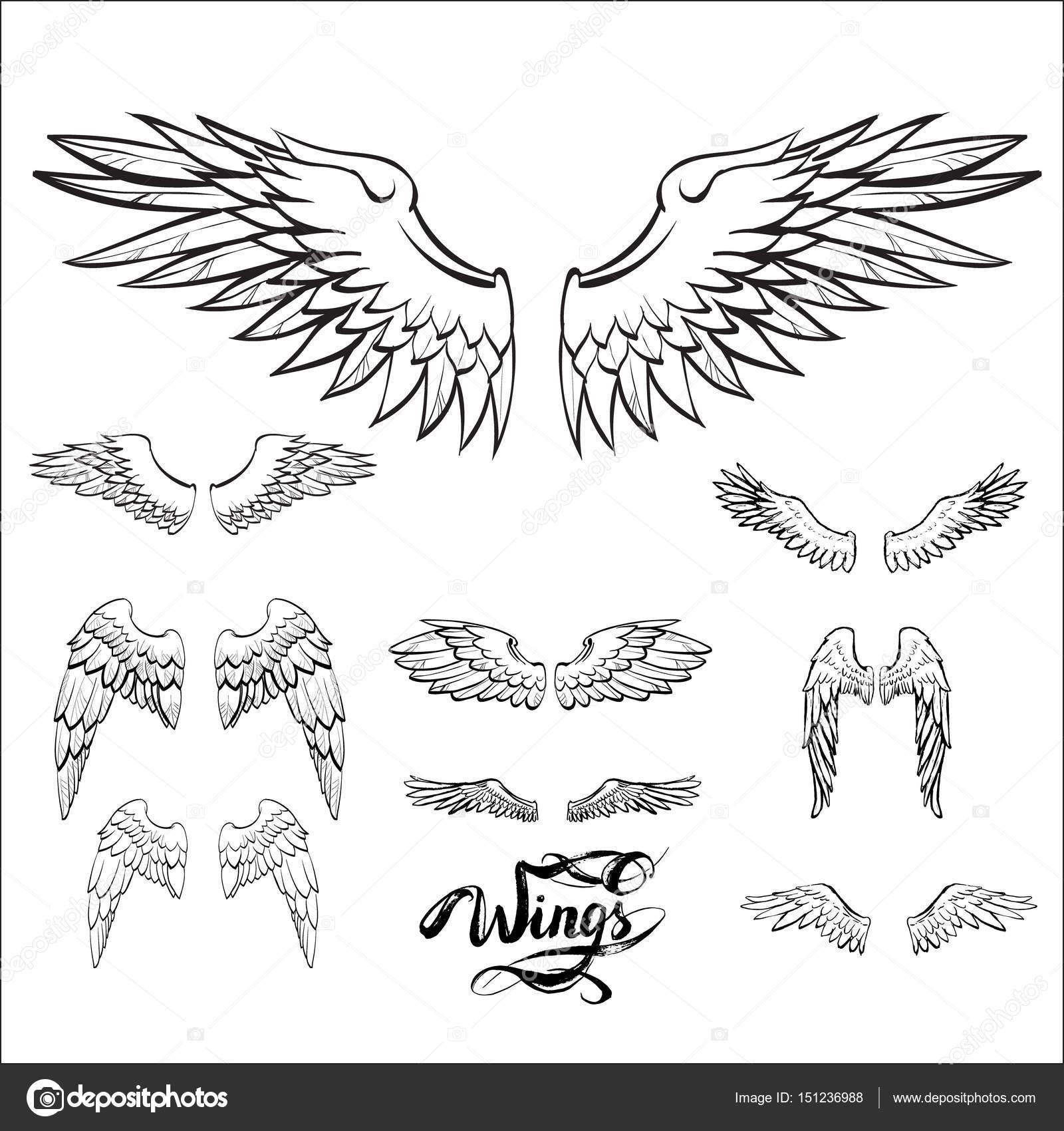 Ailes D Ange Dessin ailes d'ange vecteur, lettrage, dessin — image vectorielle tanshy