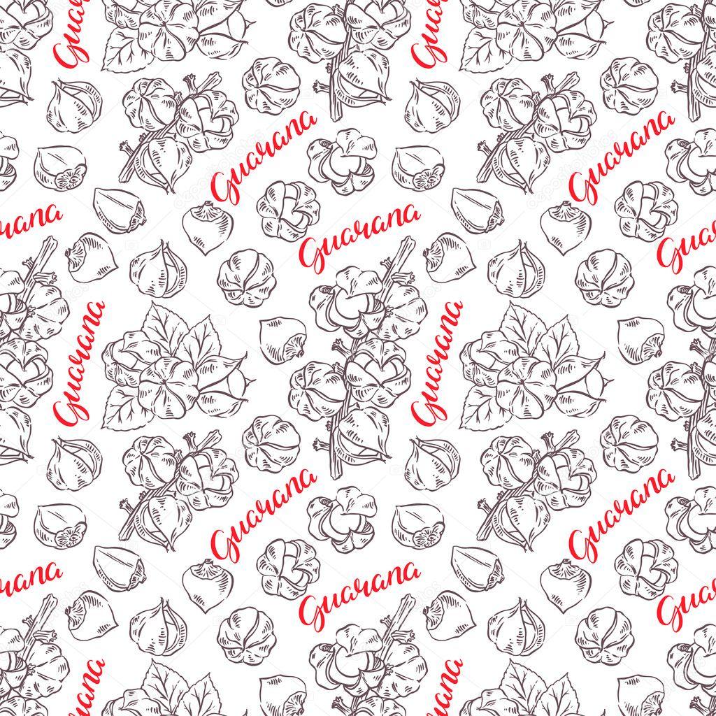 seamless sketch guarana