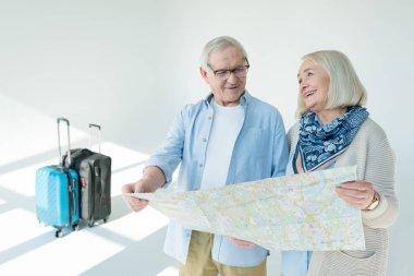 Portrait of senior couple choosing destination of trip on grey, traveling concept stock vector