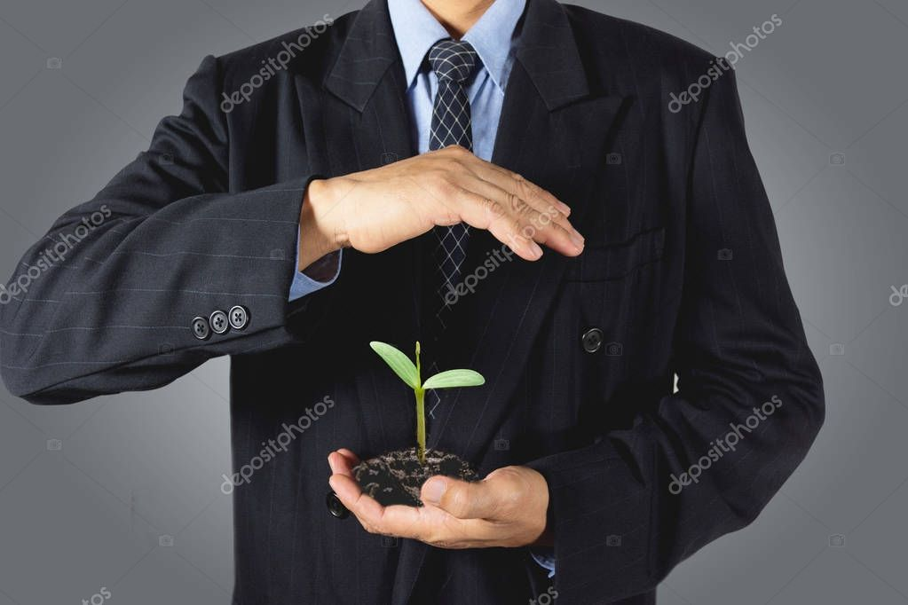 Ecology concept businessman hands holding and covering young plant tree. Plant tree growing on businessman hand. Financial growth concept ideas.