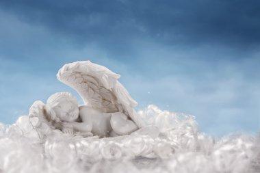 Little angel in the wings