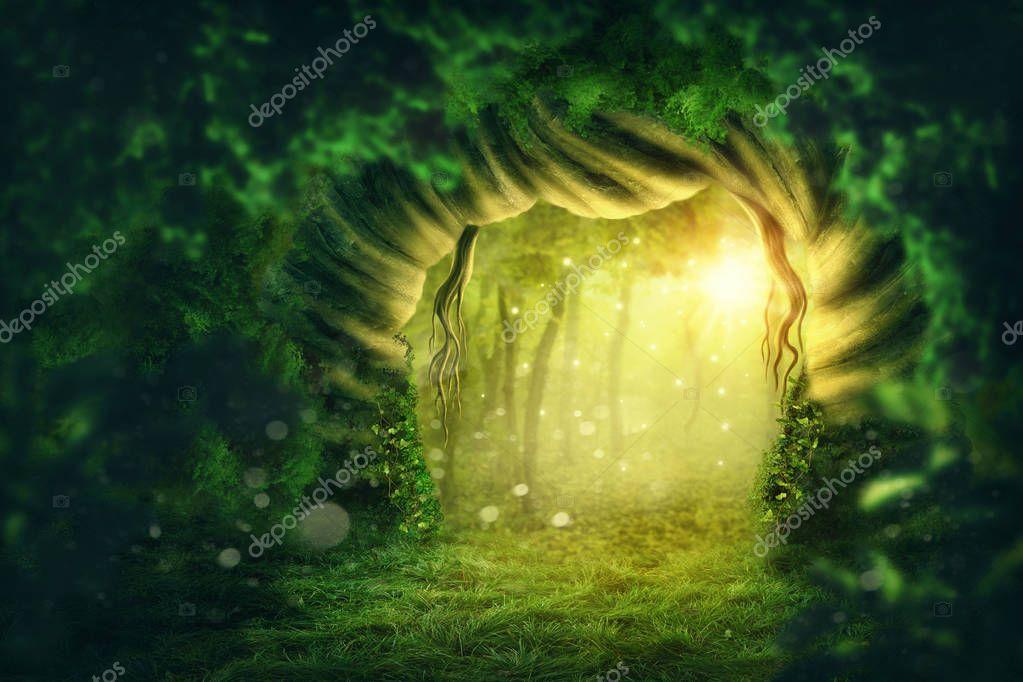Фотообои Magic dark forest