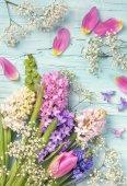 Fotografie tulipány a Hyacint květiny