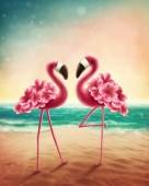 Fotografie zwei flamingos