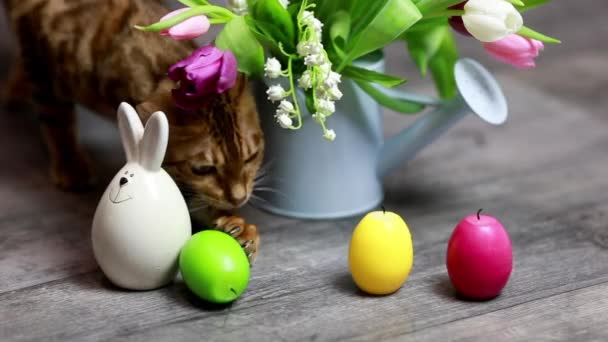 Velikonoční vejce na pozadí