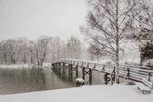 Fotografie Winter-Tegernsee-Bayern-Alpen