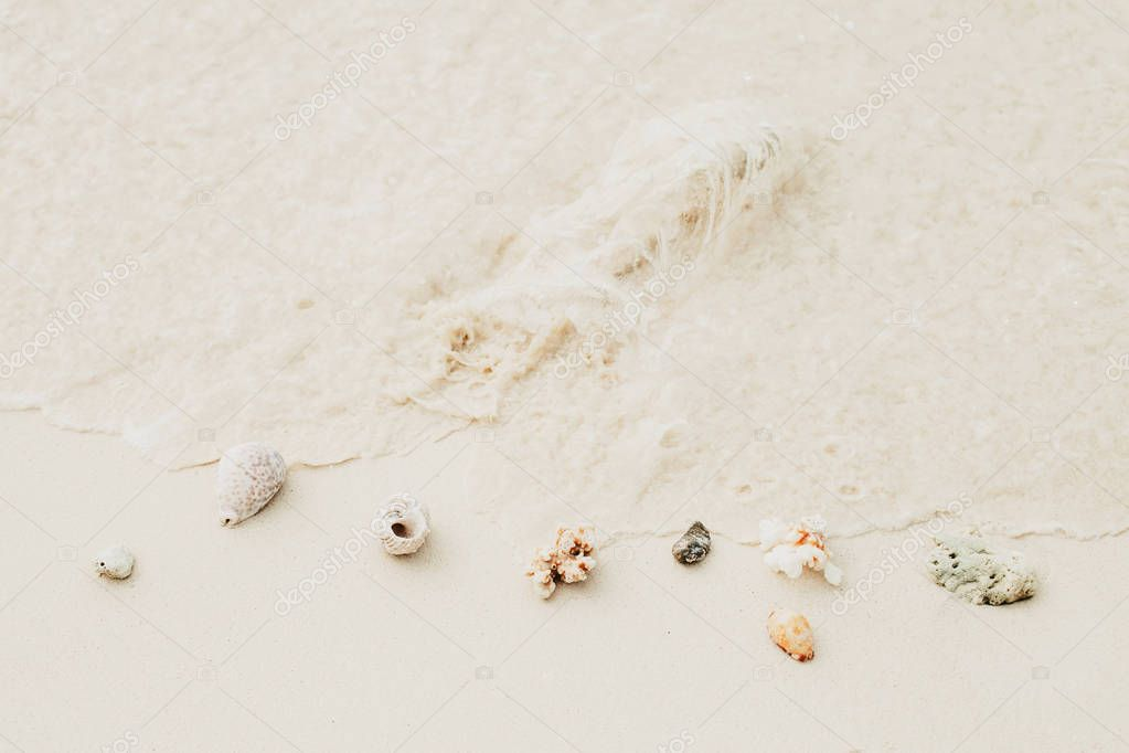 Sea shells and corals on white soft sand beach with copy space. Flat lay, top view. Travel blog footer. Space for text