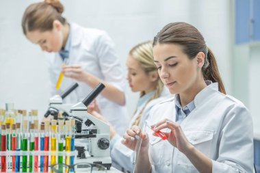 Young female scientists in lab coats working in chemical laboratory stock vector
