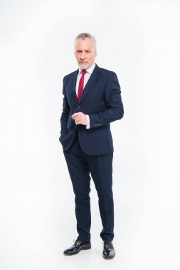 Full length portrait of handsome mature businessman in suit looking at camera isolated on white stock vector