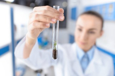 scientist with laboratory tube