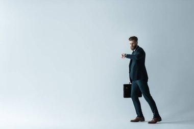 Handsome businessman with briefcase