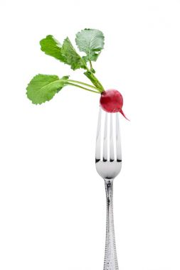 fresh radish on fork