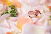 Photo Wedding rings on rose petals