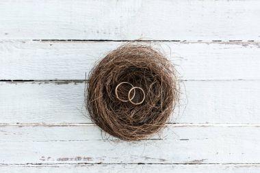Wedding rings on nest