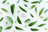 Snubní prsteny a zelenými listy