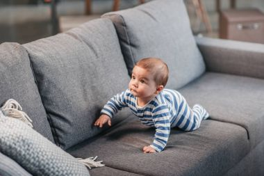 baby boy crawling on sofa